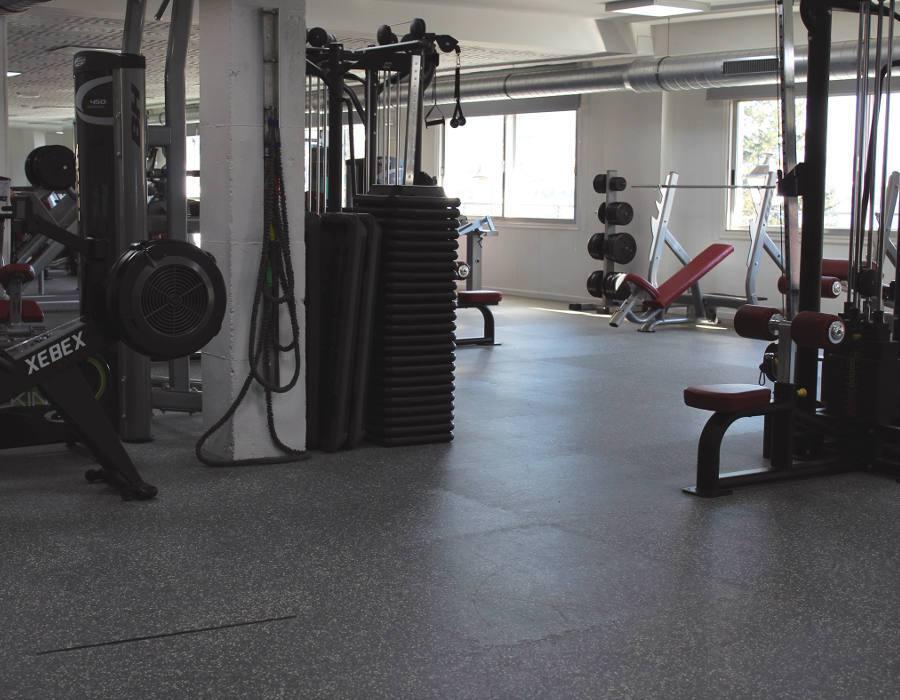Remo y Poleas QPRO Gym